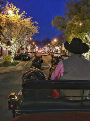 Holiday Horse and Carriage Rides in Visalia, California